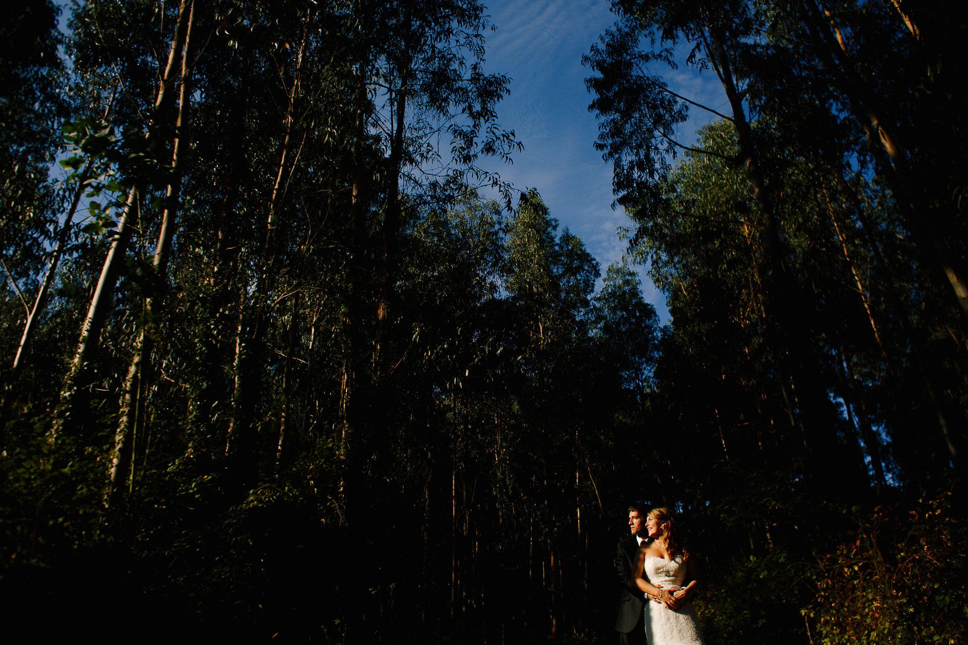 post boda en el bosque bakio