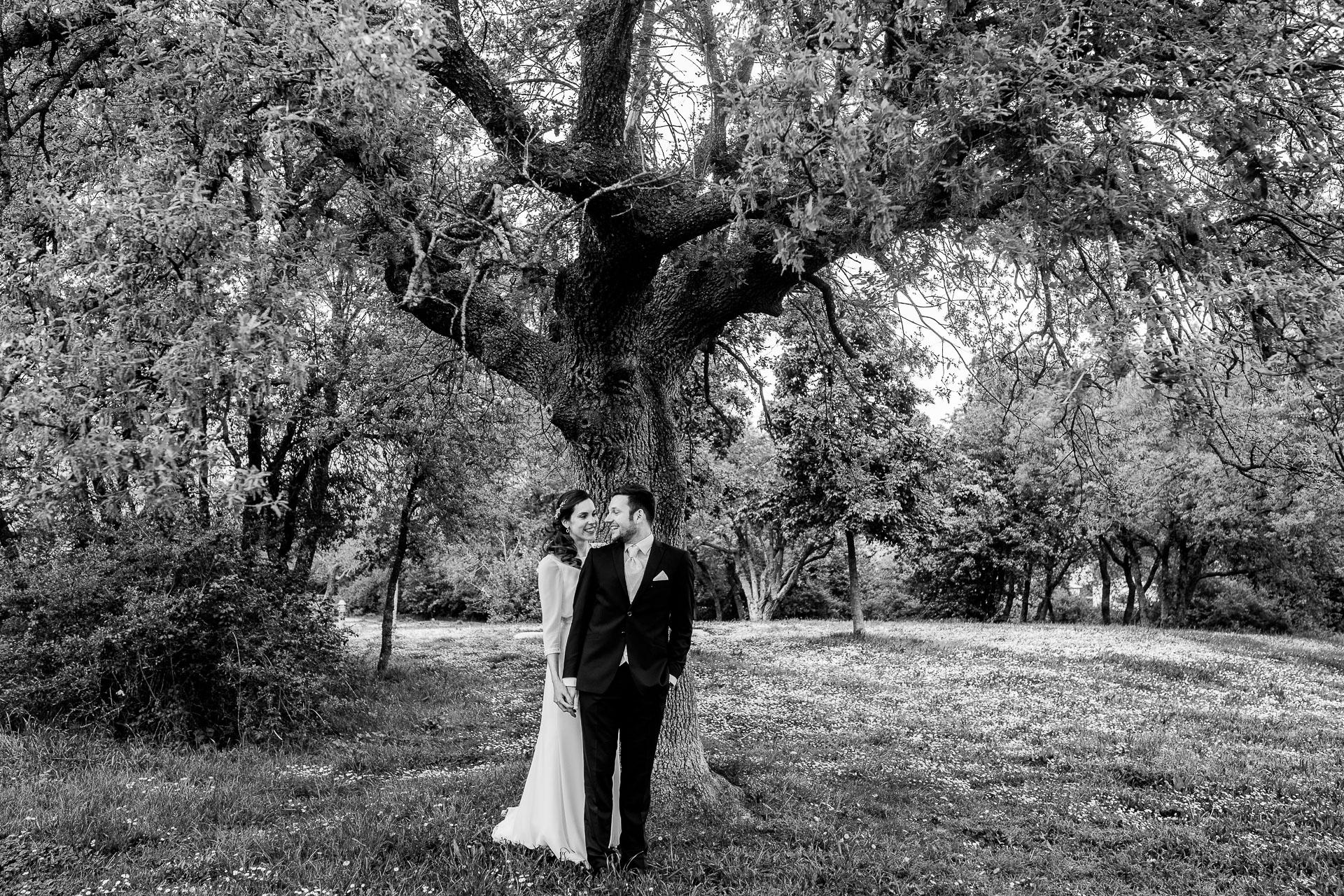reportaje boda bosque armentia