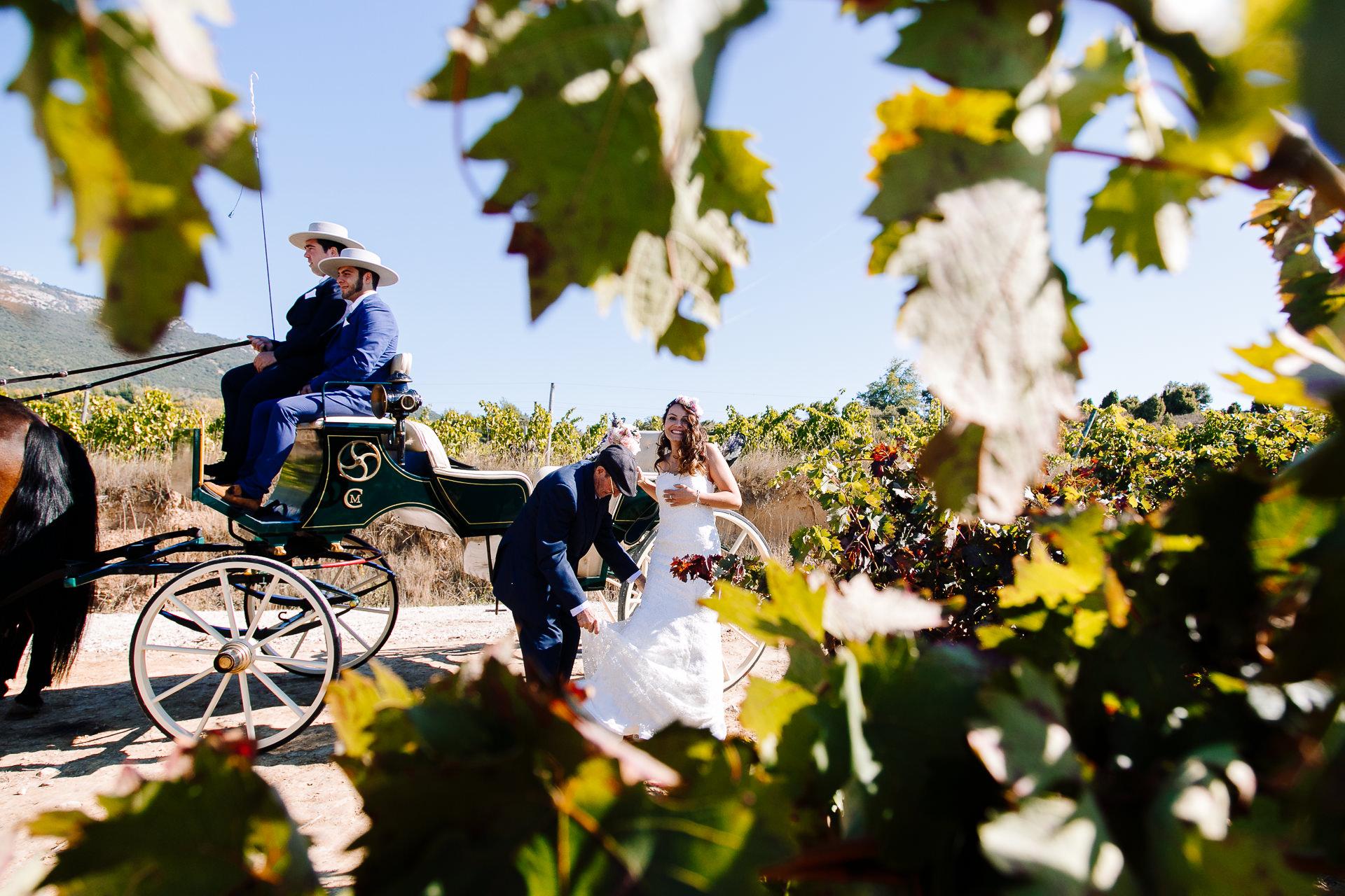 boda civil vinedos larioja lola berantevilla 133026
